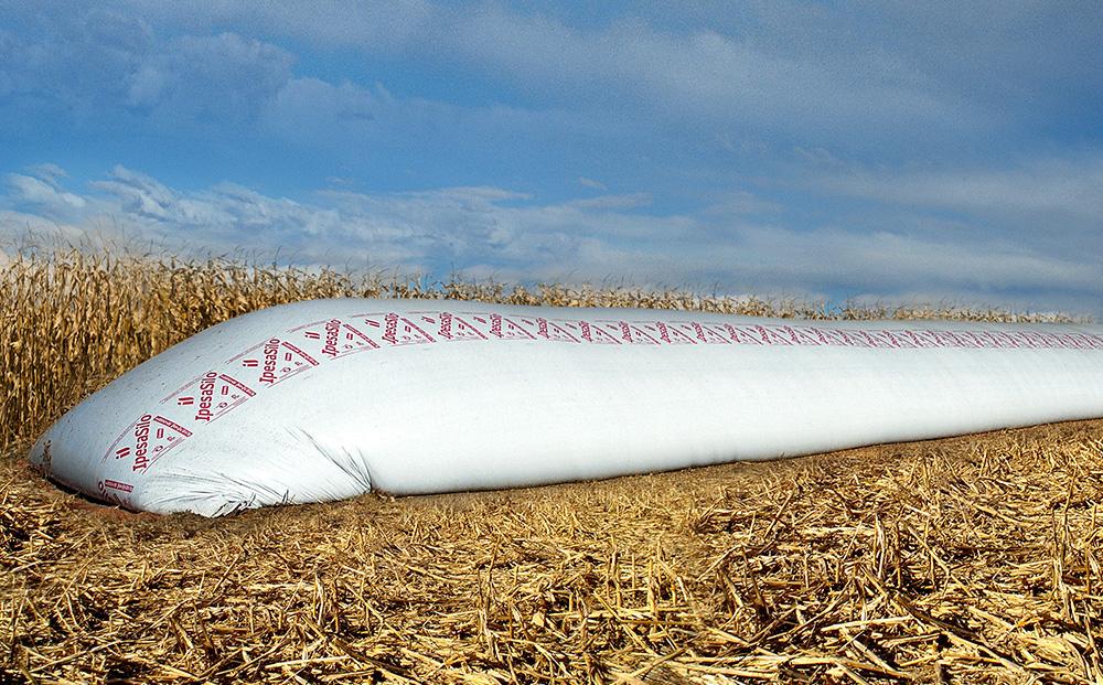 Ipesa Grain Bag