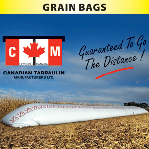 Grain-Bag-Picture